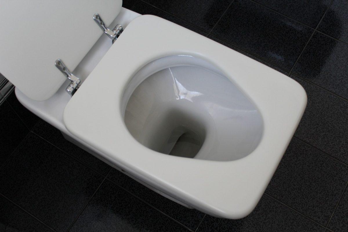 Kako odstraniti urinski kamen v toaletni školjki?